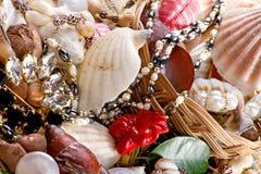 seashells макроса ювелирных изделий Стоковое Фото