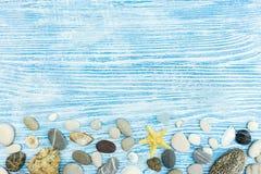 Seashells, морские звёзды, камни на покрашенных голубых деревянных досках Стоковые Изображения RF