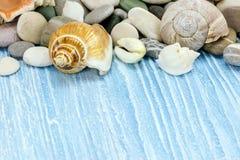 Seashells, морской камешек и камни на сини покрасили деревянное backg Стоковые Изображения