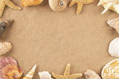 Seashells на песке Стоковая Фотография RF