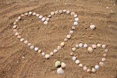 Seashells на песке стоковые изображения