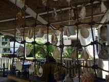 Seashells на сети рыбной ловли стоковое фото