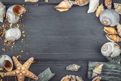 Seashells обрамляют на деревянной голубой предпосылке Взгляд сверху Стоковые Фотографии RF