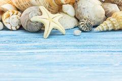 Seashells с морскими звёздами на голубых деревянных досках летние отпуска b Стоковое Фото