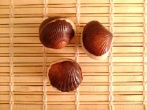 Seashells шоколада Стоковые Фото