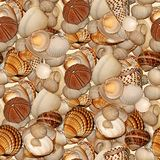 Seashells. Seamless Texture Tile from Photographic Original Royalty Free Stock Photo