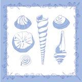 Seashells. Frame with seashells and isolated seashells Vector Illustration