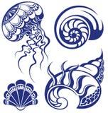 установленные seashells Стоковая Фотография