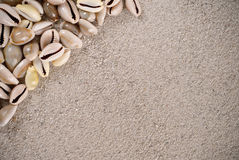 Seashells And Sand Background Stock Photography