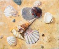 Seashells auf dem Sand Lizenzfreies Stockfoto