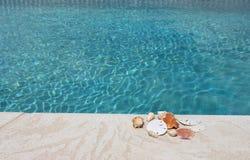 Seashells auf einer Poolplattform lizenzfreie stockbilder