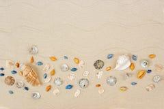 Seashells auf Sand Seesommerferienhintergrund mit Raum f?r den Text lizenzfreie stockfotografie