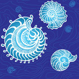 Seashells on a background. Seamless underwater graphic seashells on a background Stock Photo