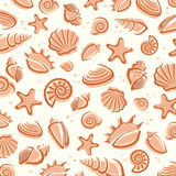 Seashells background. Vector Royalty Free Stock Images