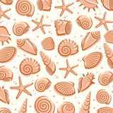 Seashells background. Vector. Illustration shell Royalty Free Stock Photography