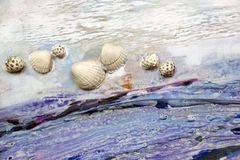 Seashells on a background of white and blue paint Royalty Free Stock Photography