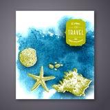 Seashells banner. Stock Images