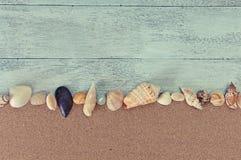 Seashells on beach sand. Concept: Holiday memories of beach, sun and sand with seashells Stock Image
