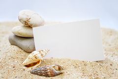 Seashells with blank card Stock Photography