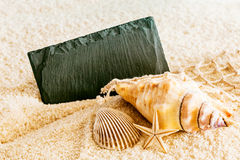 Seashells and a blank sign on a tropical beach Royalty Free Stock Photo