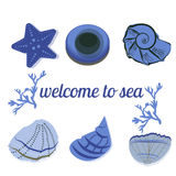 Seashells in blue with text as a background Stock Photography