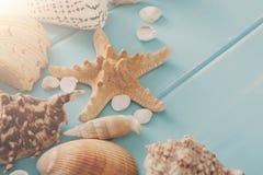 Seashells on blue wood, sea vacation background Stock Photo
