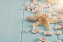 Seashells on blue wood, sea vacation background Stock Images