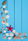 Seashells on blue wooden background. Copy space, top view. Royalty Free Stock Image