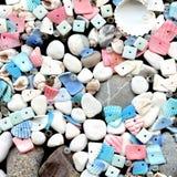 Seashells bonitos com os grânulos no fundo preto Fotografia de Stock