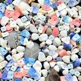 Seashells bonitos com os grânulos no preto Imagens de Stock Royalty Free