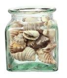 Seashells in Bottle Stock Photography