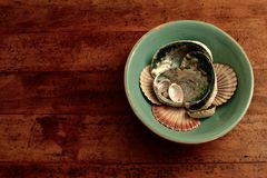 Seashells in a Bowl on a Table. Multiple New Zealand seashells in a bowl on a table Royalty Free Stock Photography