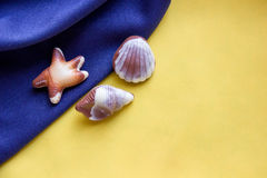 Seashells chocolates on a blue and yellow fabric. stock images