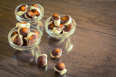Seashells chocolates Stock Images