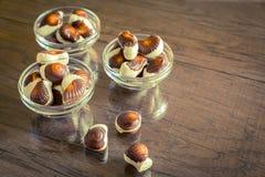 Seashells chocolates stock images
