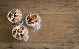 Seashells chocolates stock photography