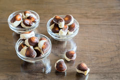 Seashells chocolates Royalty Free Stock Photos