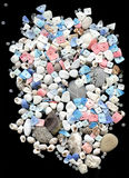 Seashells com os grânulos no fundo preto Imagens de Stock Royalty Free