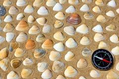 Seashells and Compass Stock Photography