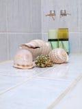 Seashells con l'insieme della stazione termale Fotografie Stock Libere da Diritti