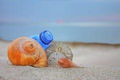Seashells con la botella en la playa Imagen de archivo libre de regalías