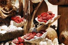 Seashells and coral Royalty Free Stock Photo