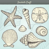 Seashells Craft Elements Set. Illustration of various sea shells doodled in a vintage style. Includes conch shell, spiral, clam, sand dollar, sea star, and Royalty Free Stock Photo