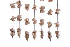 Seashells d'attaccatura Immagini Stock