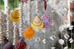 Seashells dans des amorçages photographie stock