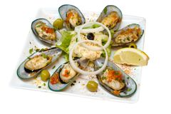 Seashells dans une plaque Photographie stock libre de droits