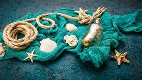 Seashells on dark turquoise background Royalty Free Stock Images