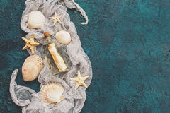 Seashells on dark turquoise background Royalty Free Stock Photo