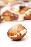 Seashells de chocolat images libres de droits