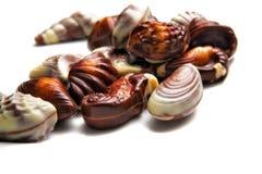 Seashells de chocolat   image libre de droits